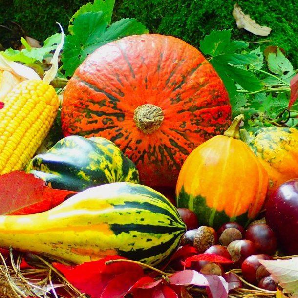 autumn-2851907_1920